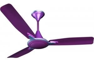 Amour Lavender premium ceiling fans