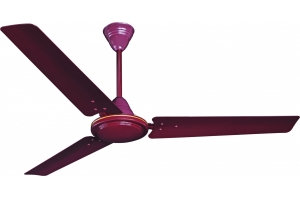 WWPS lustre brown fan