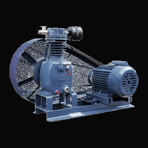 Belt compressor pump in India at low price | Crompton
